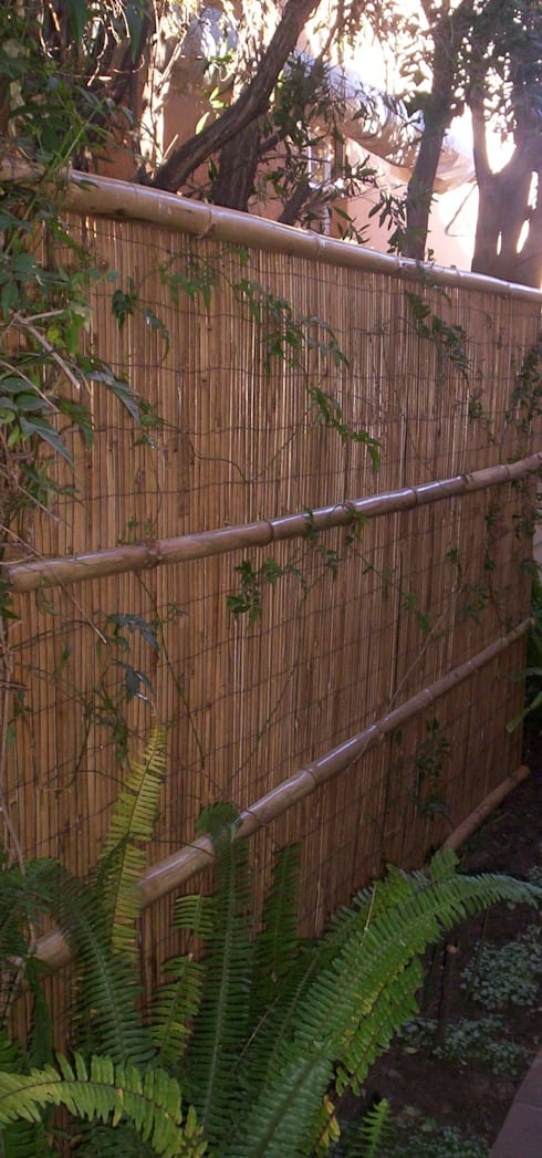 FIENBERG: asian Garden by Japanese Garden Concepts
