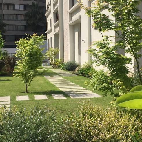 Vista sendero patio: Edificios de Oficinas de estilo  por Bächler Paisajismo