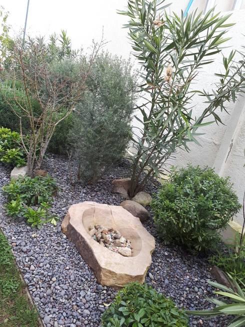 Jardín en Chicureo : Jardines de estilo  por Bächler Paisajismo
