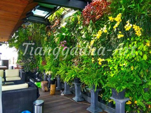 Proses pembuatan taman vertikal:  Kolam taman by Tukang Taman Surabaya - Tianggadha-art