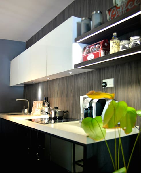 Industrial Modern Contemporary:  Built-in kitchens by Singapore Carpentry