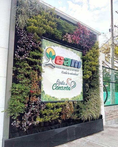 Jardín Vertical de Fachada: Casas de estilo moderno por Globo Natural
