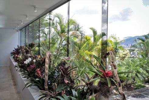 Apartamento en Chulavista: Jardines de estilo minimalista por RRA Arquitectura
