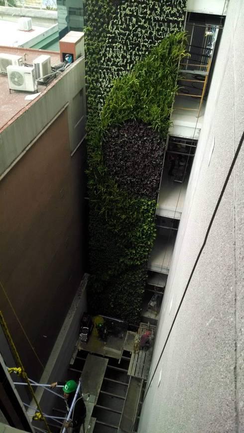 Muros Verdes: Oficinas y tiendas de estilo  por Designo Arquitectos