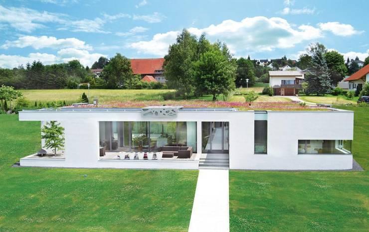 Wohnhaus L., Ertingen:  Häuser von Optigrün international AG,Ausgefallen