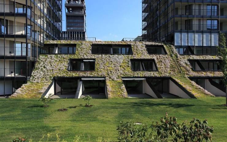 Optigrün international AG의  주택