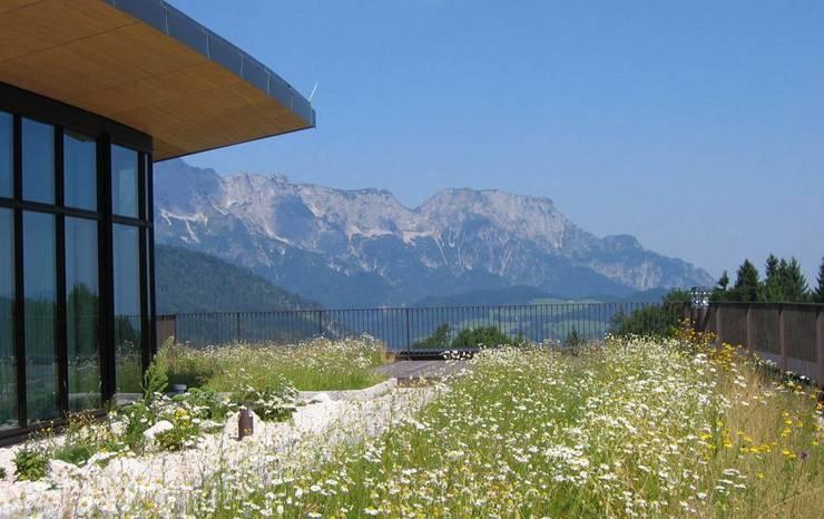 InterContinental Berchtesgaden Resort:  Häuser von Optigrün international AG