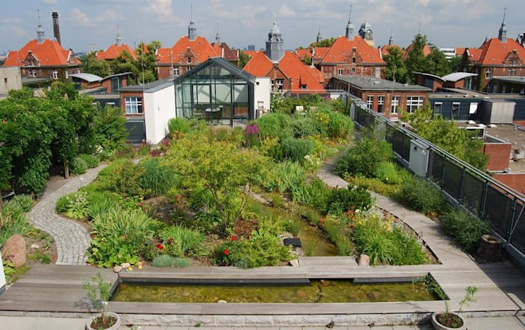 Wiegmann-Klinik, Berlin:  Terrasse von Optigrün international AG