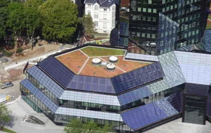 Deutsche Bank Frankfurt:  Häuser von Optigrün international AG