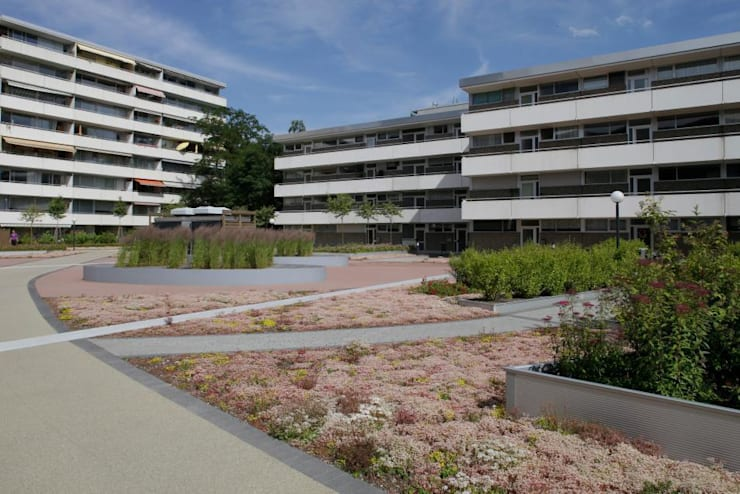 Plantanenallee Kerpen:  Häuser von Optigrün international AG