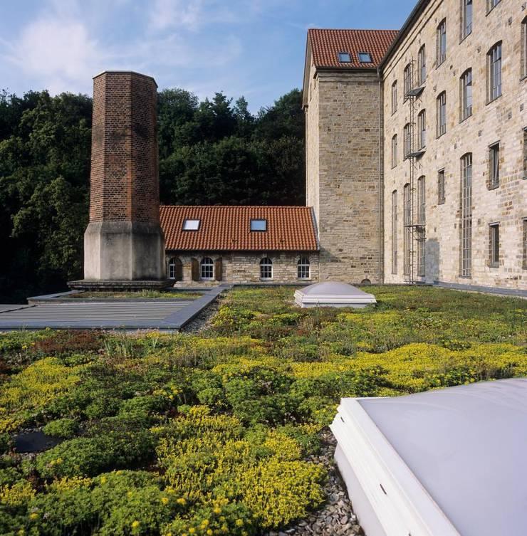 Lippn Mühle:  Häuser von Optigrün international AG