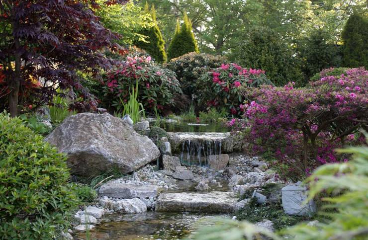 Bachläufe: moderner Garten von Kirchner Garten + Teich GmbH