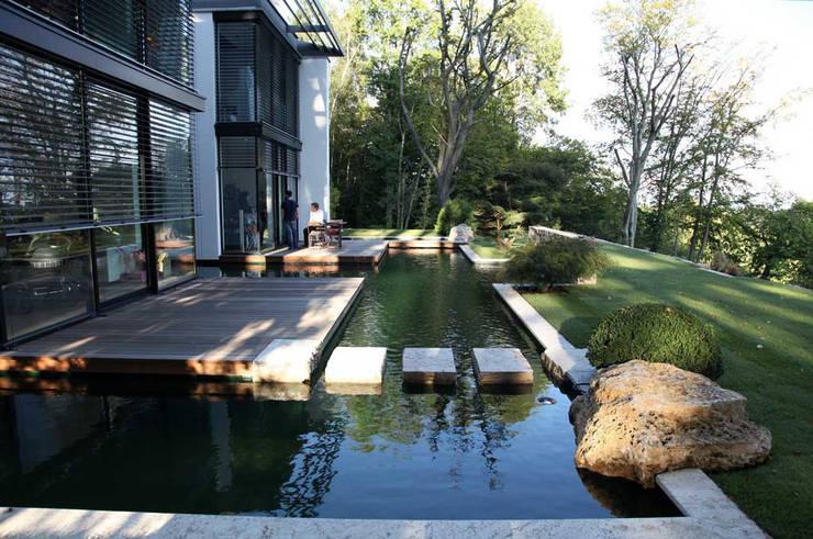 Jardins modernos por Kirchner Garten + Teich GmbH