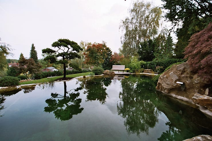 Schwimmteich in Bad Soden: moderner Garten von Kirchner Garten + Teich GmbH