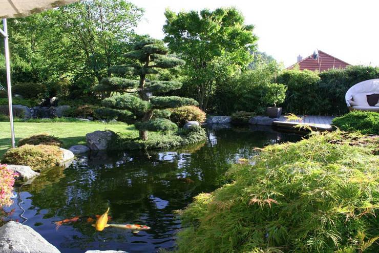 Kompletter Garten in Freiburg:  Garten von Kirchner Garten + Teich GmbH