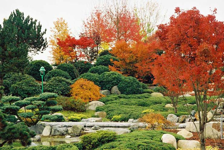 Jardines de estilo moderno de Kirchner Garten + Teich GmbH