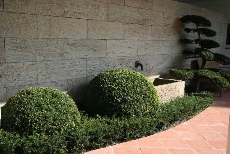 Jardin moderne par Kirchner Garten & Teich GmbH Moderne