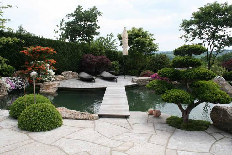 modern Garden by Kirchner Garten + Teich GmbH