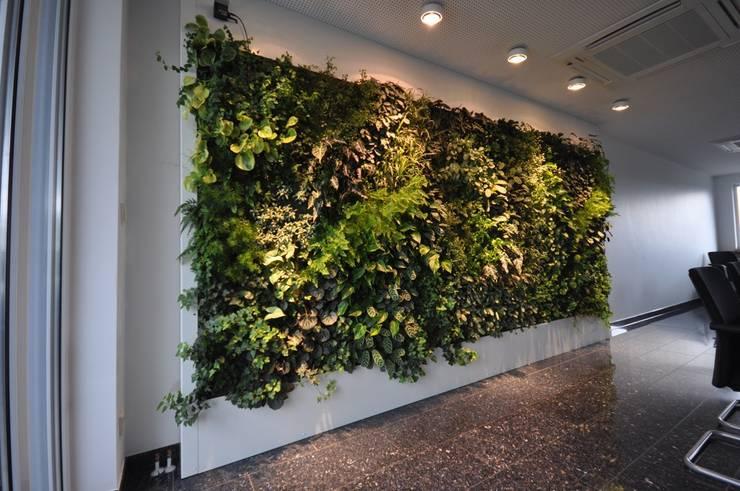 Wandgestaltung Green:   von Freund  GmbH