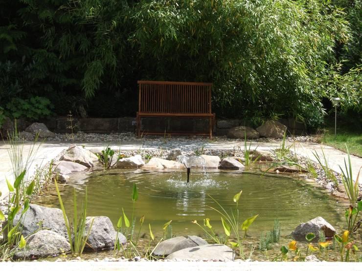 Jardin de style de style Moderne par Schönberg. Pflanzdesign