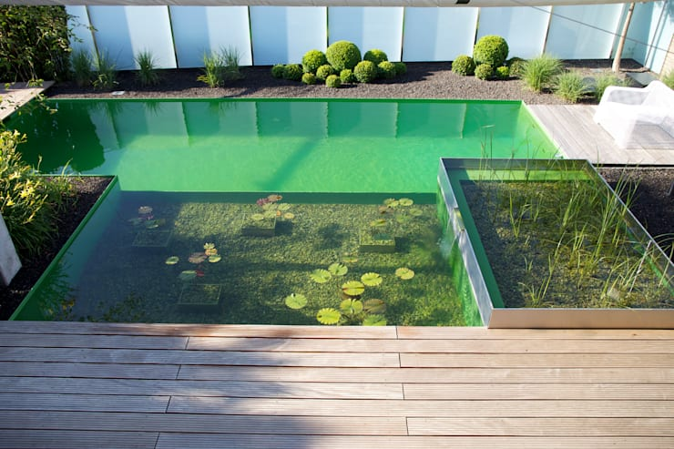 Piscinas de jardim  por Balena GmbH