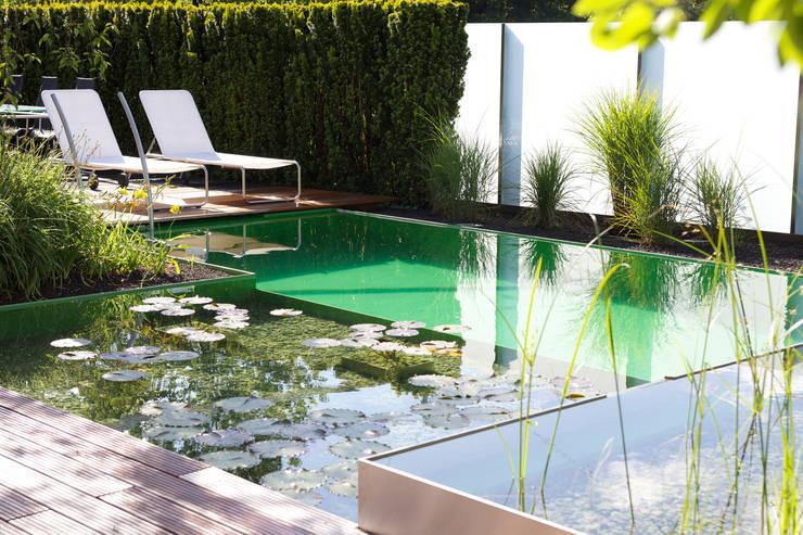 Piscines privées de style  par Balena GmbH