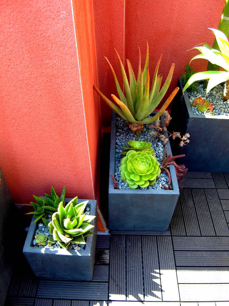 Barcelona-Meridiana: Jardines de estilo  de Simbiosi Estudi