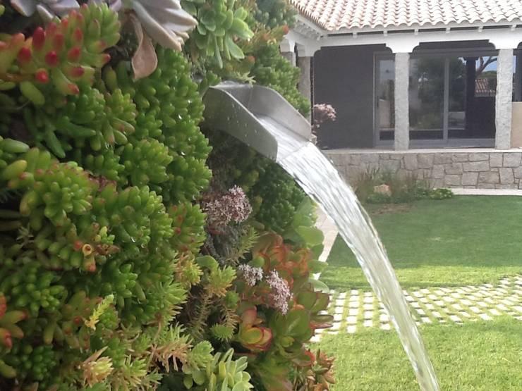 Jardines de estilo ecléctico por PhytoKinetic S.L.