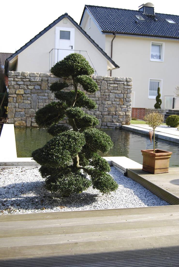 Jardines de piedra de estilo  por Stein/Garten/Design e.K