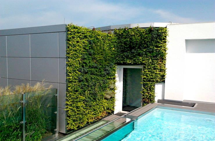 Patios & Decks by Architettura & Servizi