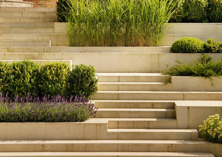 Jardins  por Gregory Phillips Architects