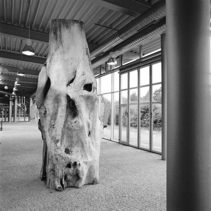 Giganten:   von Freund  GmbH,Ausgefallen
