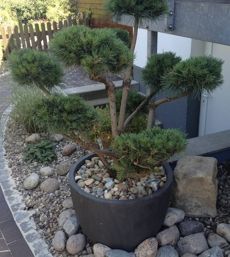 Oswald Gärten의  바위 정원, 한옥