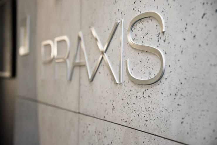 logo Praxis : styl , w kategorii Powierzchnie handlowe zaprojektowany przez TG STUDIO