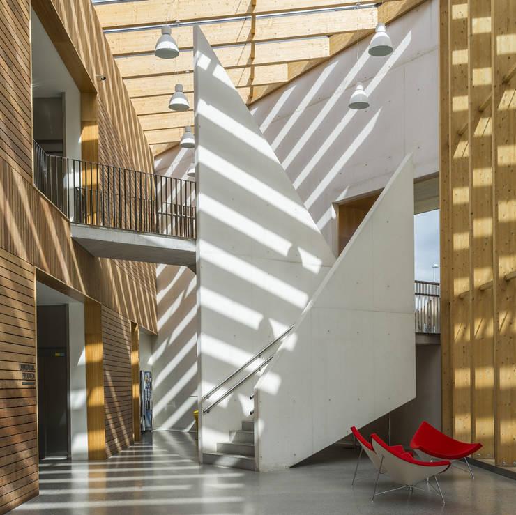 escalera principal: Escuelas de estilo  de JAAM sociedad de arquitectura