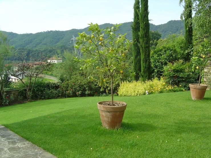 Garden by Studio Green Design