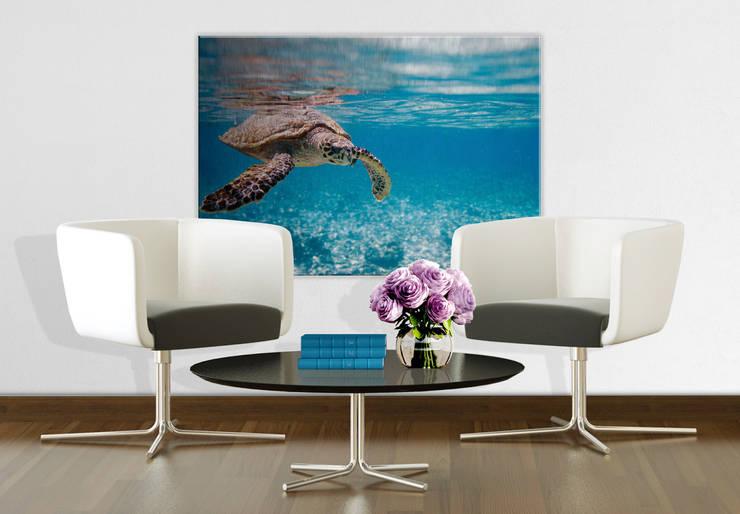 Alu-Dibond Silbereffekt - Schildkröte auf Reisen :  Wände & Boden von K&L Wall Art