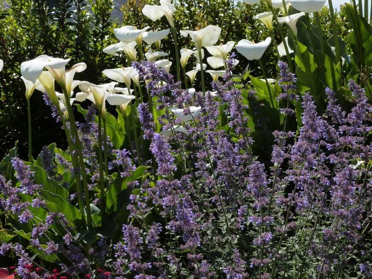 Jardines de estilo clásico por Landscapes & Cie