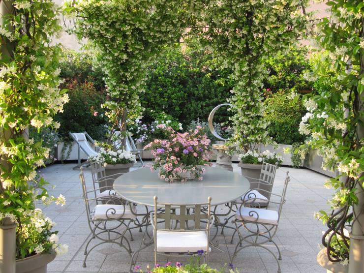 Terrace by MASSIMO SEMOLA PROGETTAZIONE GIARDINI MILANO