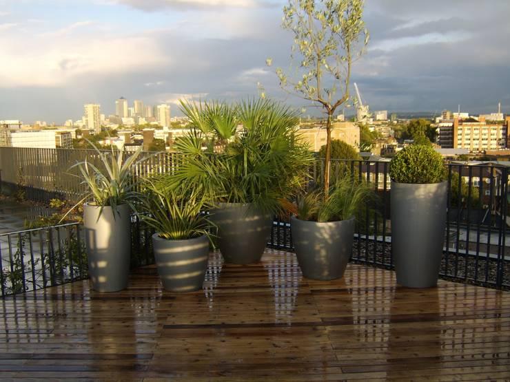 Hiên, sân thượng by Urban Roof Gardens