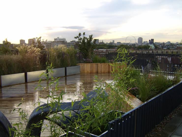 Terrasse de style  par Urban Roof Gardens