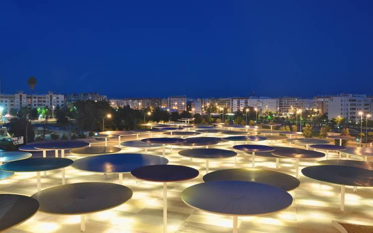 CAAC Cordoba: Jardines de estilo moderno de ParedesPino arquitectos