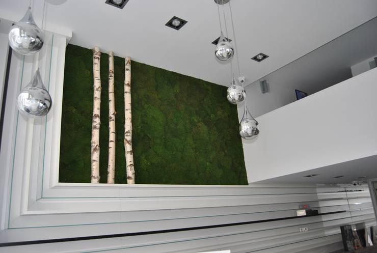 Murs végétaux stabilisés: Paysagisme d'intérieur de style  par WallUP