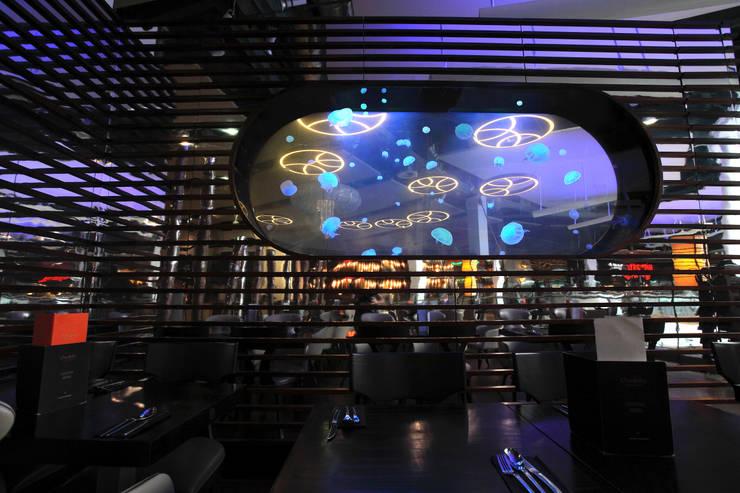 Espacios comerciales de estilo  de Aquarium Architecture