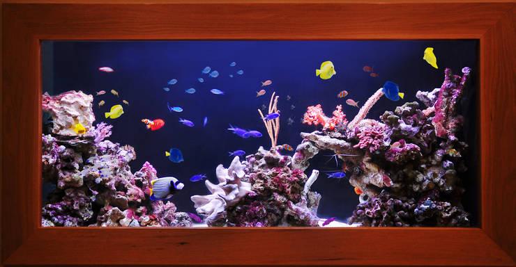 Projekty,  Salon zaprojektowane przez Aquarium Architecture