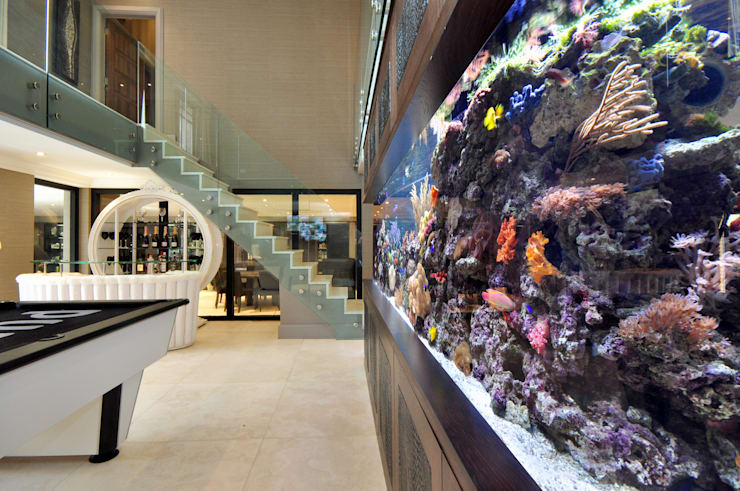Footballer's Pad Aquarium:  Living room by Aquarium Architecture