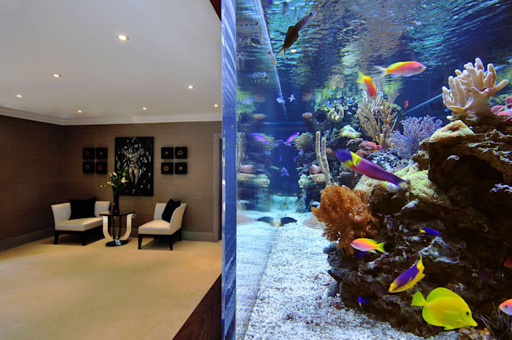 Footballer's Pad Aquarium: modern Living room by Aquarium Architecture