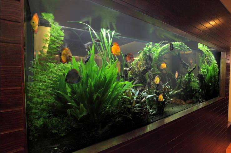Gastronomy by Aquarium Architecture