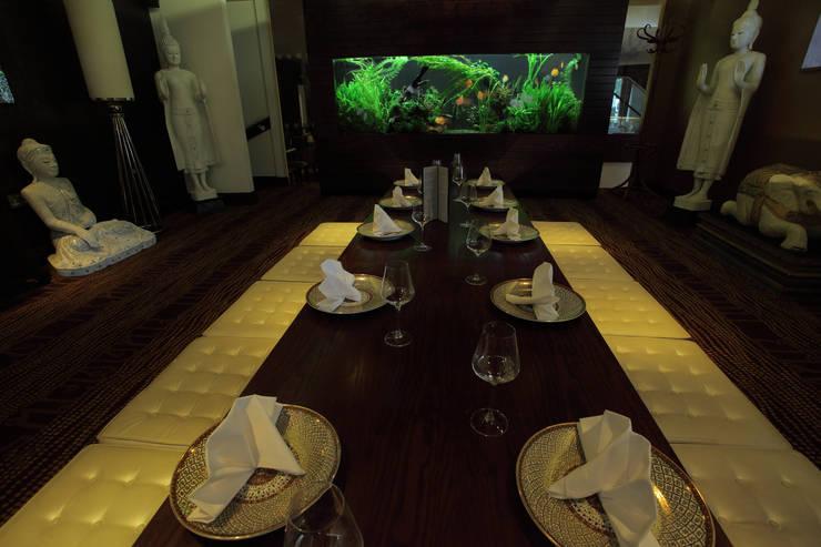 Aquarium Architecture:  tarz Yeme & İçme