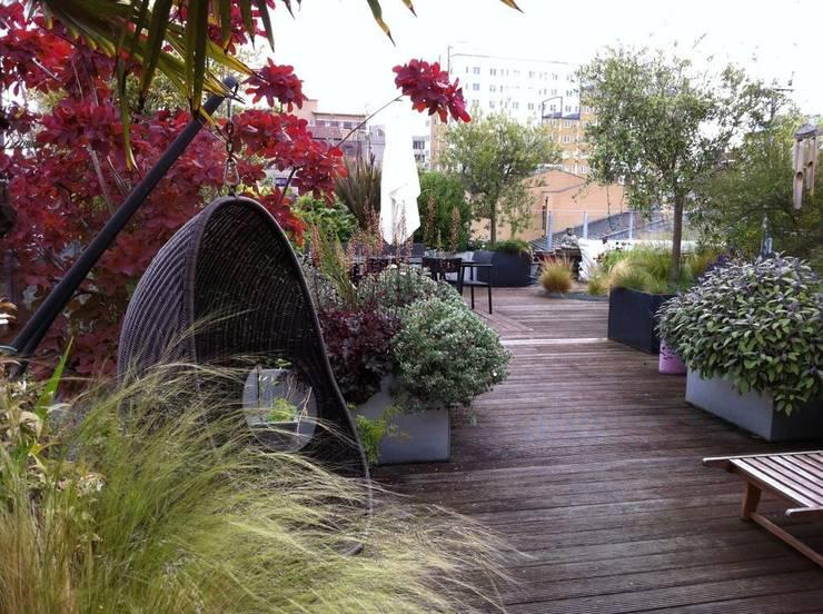 Giardino in stile in stile Industriale di Cool Gardens Landscaping
